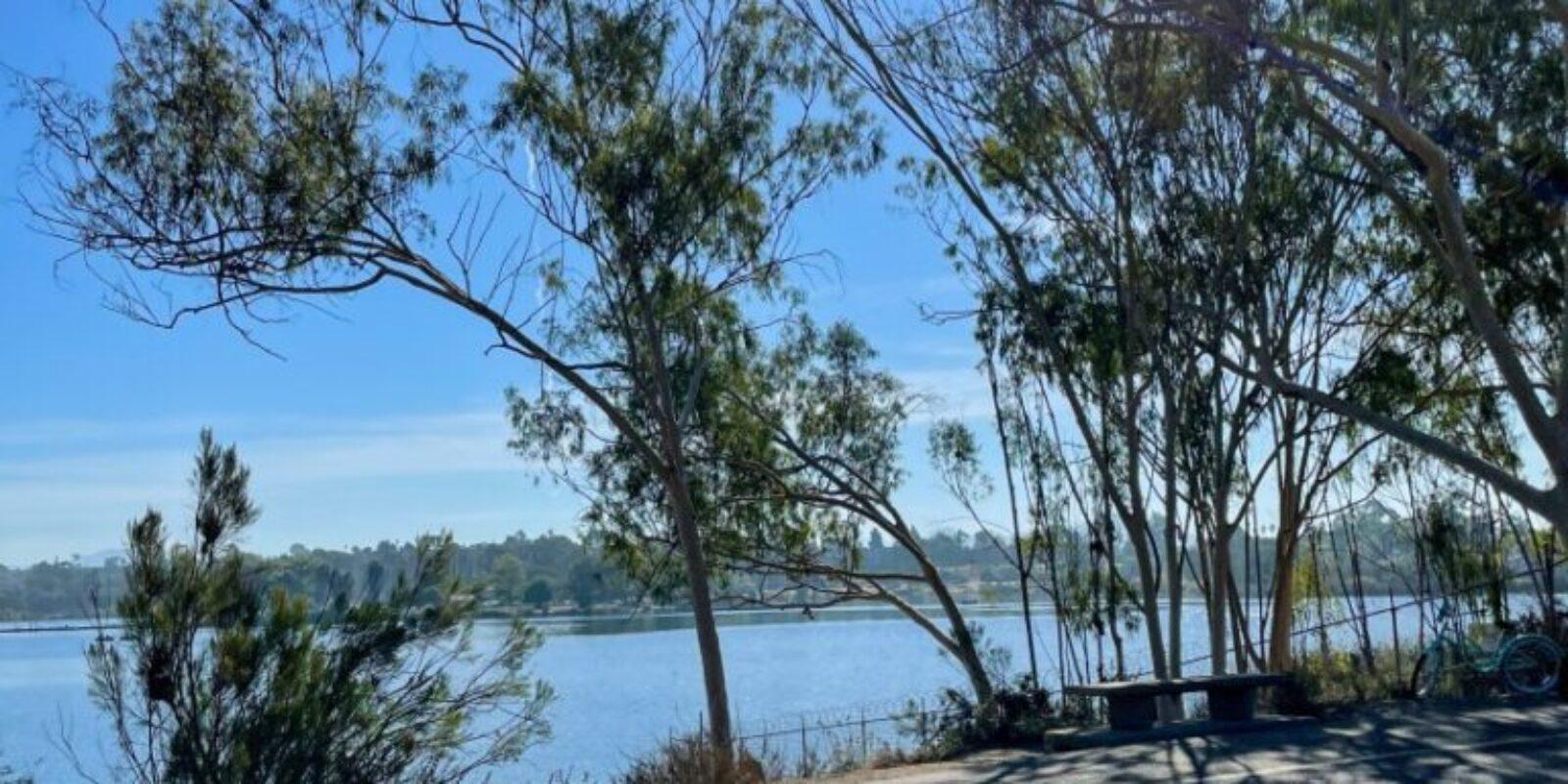 runnylegs-jenny-nyc-training-lake-murray